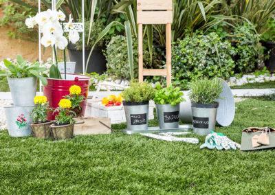 dalani gardening a whitehouse52