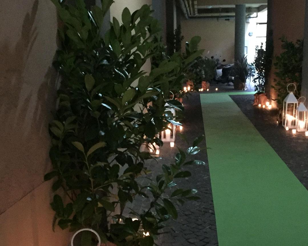 tappeto verde ingresso whitehouse52