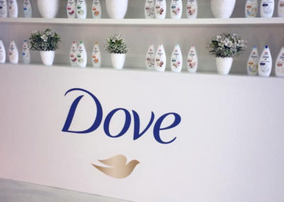dove product presentation